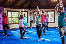 yoga at EL